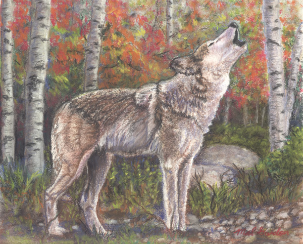 Wolf art done in chalk pastel on paper.